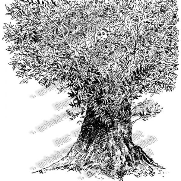 Basiskatalog - 11492