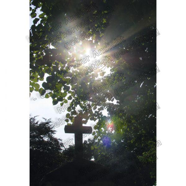 4+5/2015 - 29165